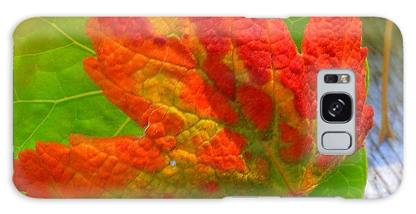 Autumn Delight Galaxy Case by Karen Horn
