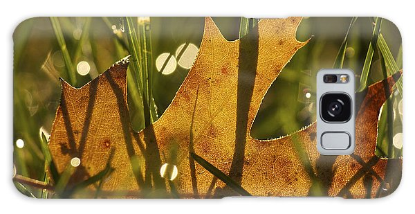 Autumn Dew Galaxy Case by Penny Meyers