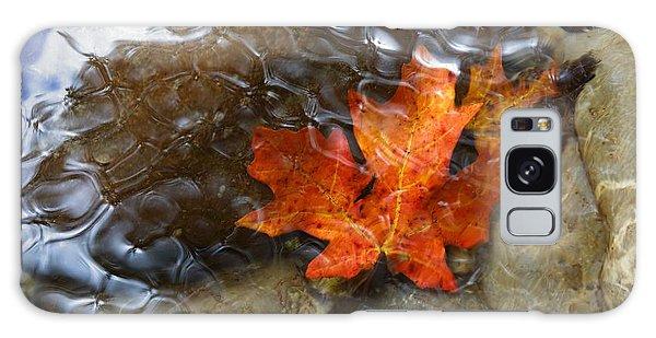 Autumn Down Under Galaxy Case
