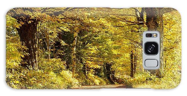 Autumn Evening Galaxy Case by Gerald Hiam