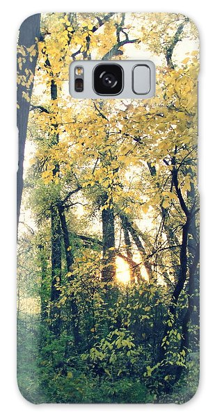 Autumn Evening Galaxy Case