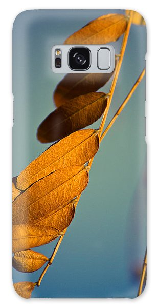 Autumn Feathers Galaxy Case