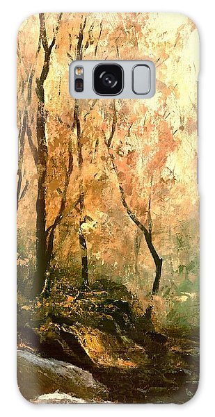 Autumn Forest Baltimore Maryland Galaxy Case