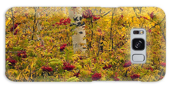 Autumn Forest Colors Galaxy Case