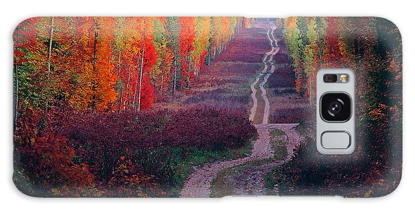 Autumn Forest Road Galaxy Case