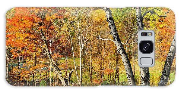Autumn Forest Scene - Litchfield Hills Galaxy Case