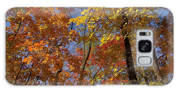 Autumn Glory Galaxy Case by Larry Bohlin