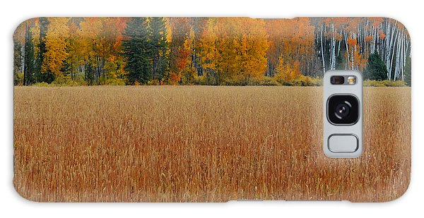 Autumn Golden Fields And Aspens Grand Teton National Park Galaxy Case