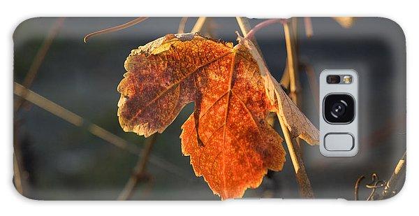 Autumn Grape Leaf Galaxy Case