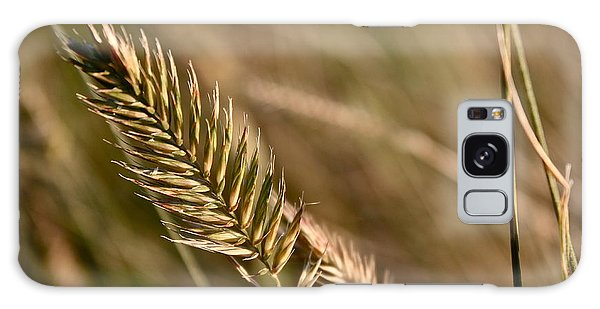 Autumn Grasses Galaxy Case