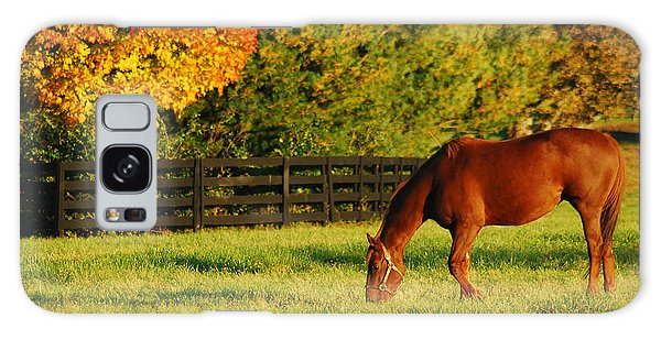 Autumn Grazing Galaxy Case by James Kirkikis