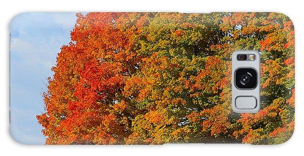 Autumn Grazing Galaxy Case