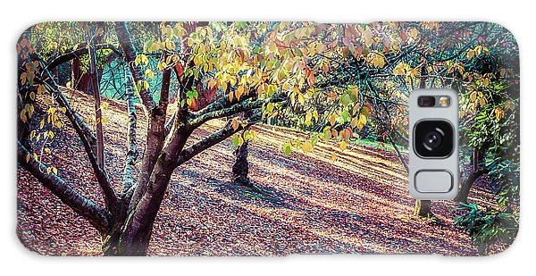 Autumn Grove Galaxy Case