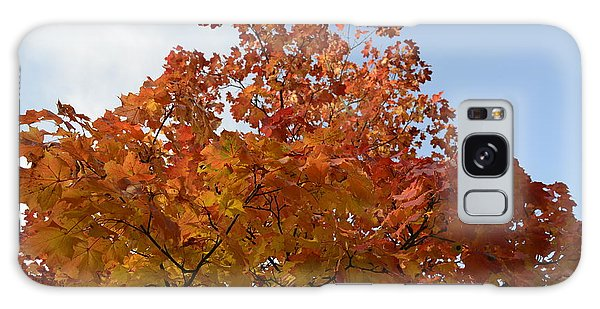 Autumn Harmony 1 Galaxy Case