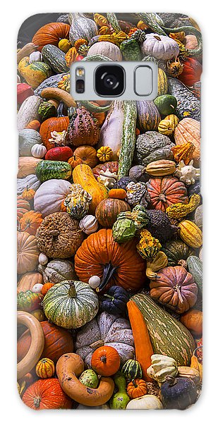 Gourd Galaxy Case - Autumn Harvest Pile by Garry Gay