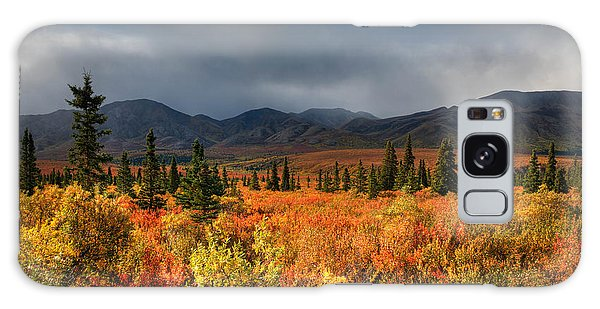 Autumn In Alaska Galaxy Case