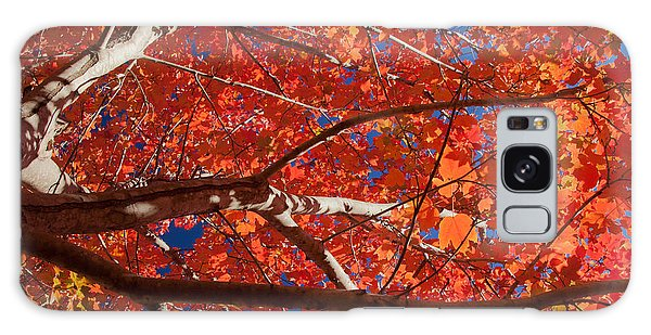 Autumn In Australia Galaxy Case
