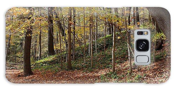 Autumn In Grant Park 4 Galaxy Case