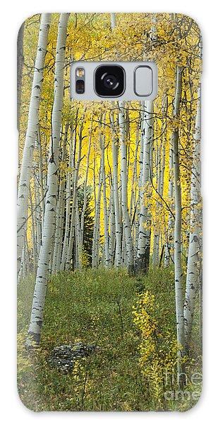 Autumn In The Aspen Grove Galaxy Case