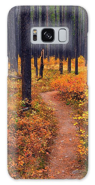 Autumn In Yellowstone Galaxy Case
