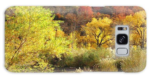Autumn In Zion Galaxy Case