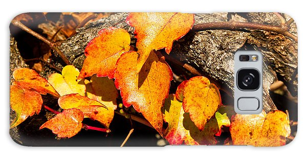 Autumn Ivy Galaxy Case by Crystal Hoeveler