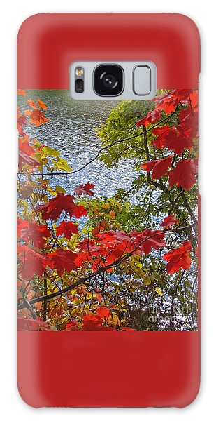 Autumn Lake Galaxy Case
