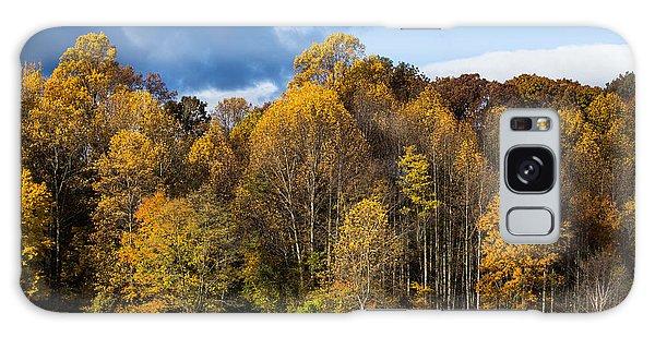 Autumn Lake Galaxy Case