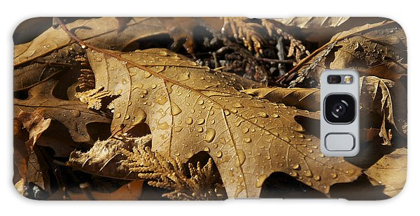 Autumn Leaf At Dawn Galaxy Case