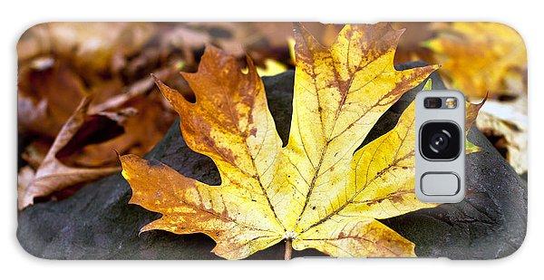Autumn Leaf Galaxy Case by Crystal Hoeveler