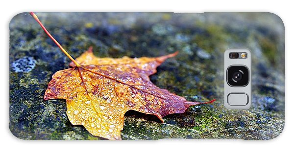 Autumn Leaf On Rocky Ledge Galaxy Case