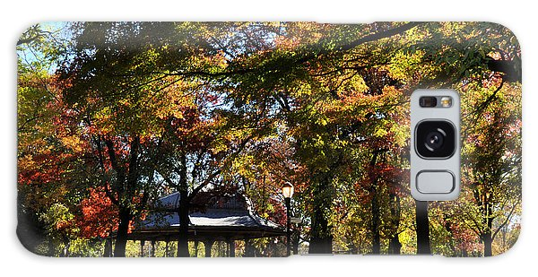 Autumn Leaves In Prospect Park Galaxy Case