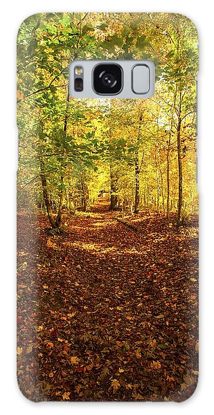 Autumn Leaves Pathway  Galaxy Case