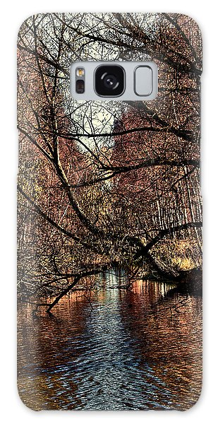 Galaxy Case featuring the photograph Autumn Light By Leif Sohlman by Leif Sohlman