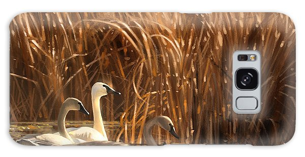 Autumn Light- Trumpeter Swans Galaxy Case