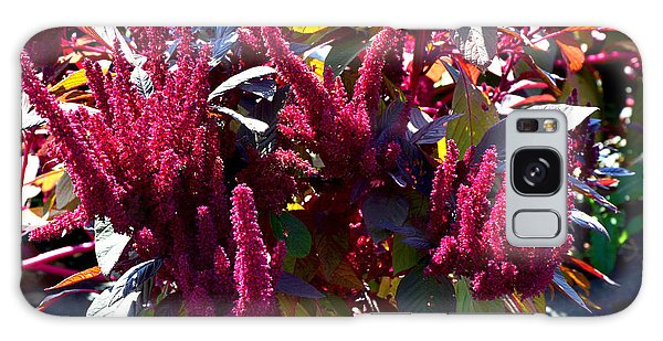 Autumn Magenta Jewel Alstede Farm Galaxy Case