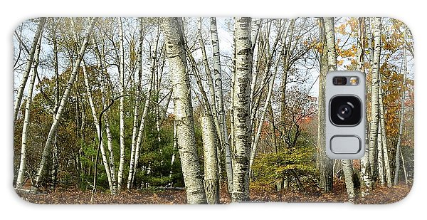 Autumn Majesty - Marion Brooks Natural Area Galaxy Case