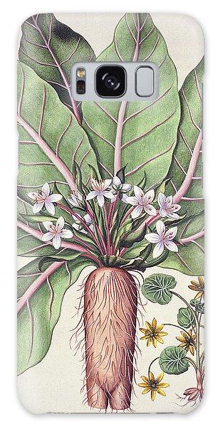 Plants Galaxy Case - Autumn Mandrake by German School