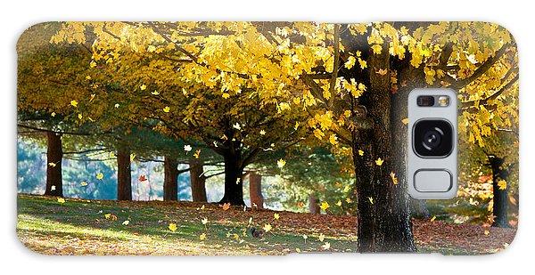 Limb Galaxy Case - Autumn Maple Tree Fall Foliage - Wonderland by Dave Allen