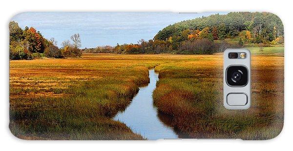 Autumn Marsh Galaxy Case