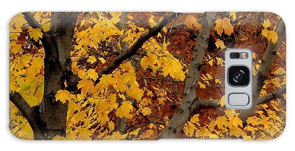 Autumn Moods 21 Galaxy Case