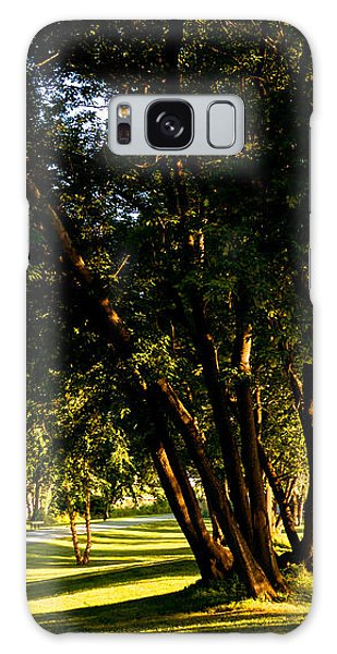 Autumn Morning Stroll Galaxy Case