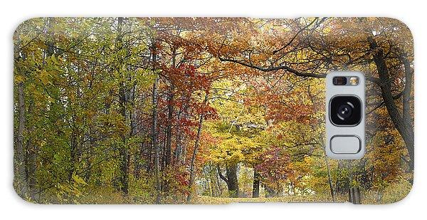 Autumn Nature Trail Galaxy Case