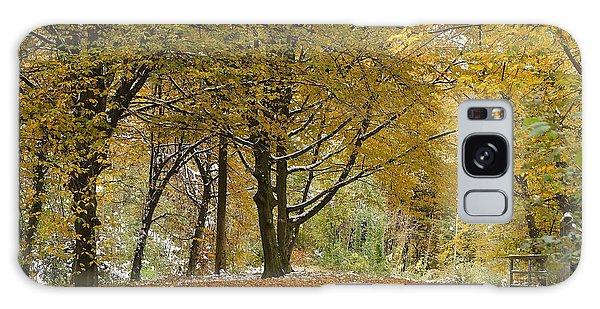 autumn on Moenchsberg in Salzburg Galaxy Case by Rudi Prott