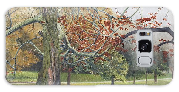 Autumn On Town Pond Galaxy Case