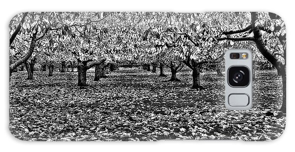 Autumn Orchard  Galaxy Case