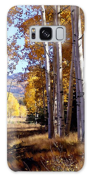 Autumn Paint Chama New Mexico Galaxy Case