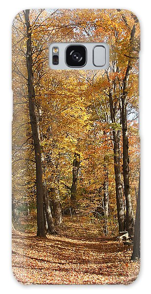 Autumn Path Galaxy Case