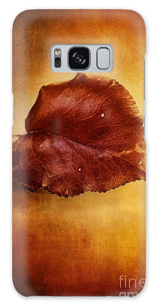 Autumn Pear Leaf Galaxy Case