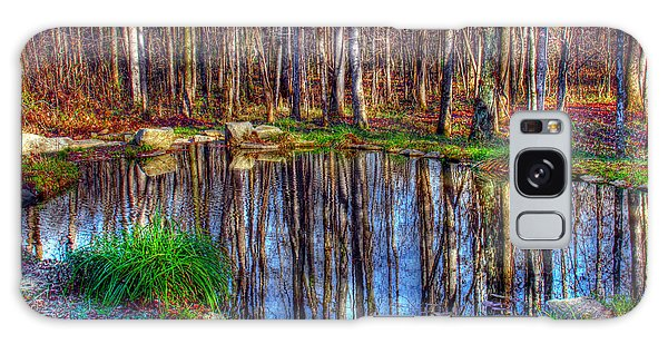 Autumn Pond Reflections Galaxy Case
